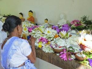 Offers brengen Anuradhapura Sri lanka
