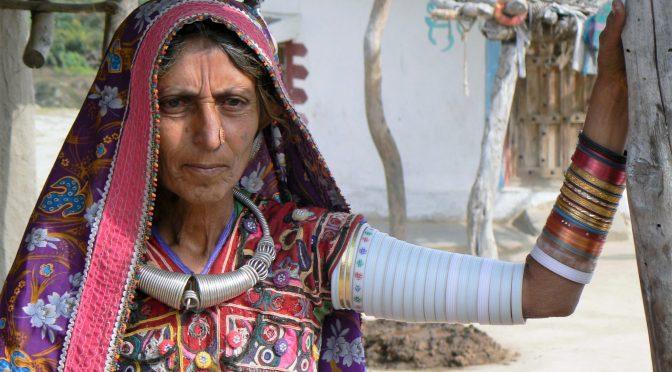 11x waarom je naar Gujarat in India wilt
