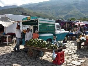 Avocado's markt Villa de Leyva Colombia