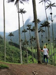 Valle de Cocora Colombia