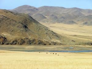 Landschap Mongolië