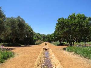 Babylonstoren wijngaard kriuidentuin Zuid-Afrika