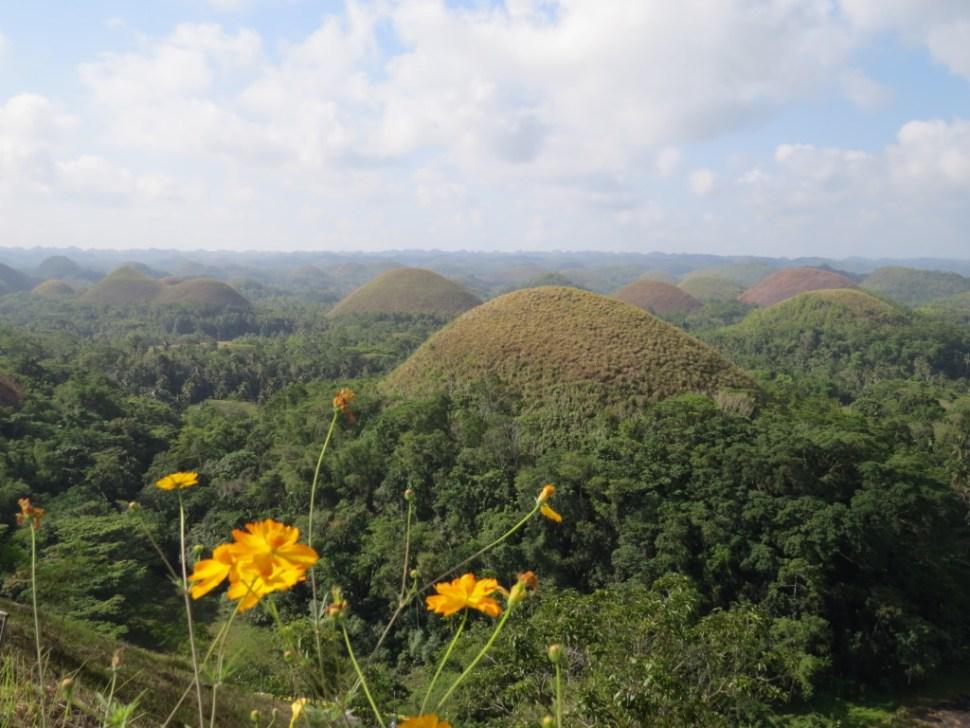 Chocolate Hills op Bohol eiland Filipijnen