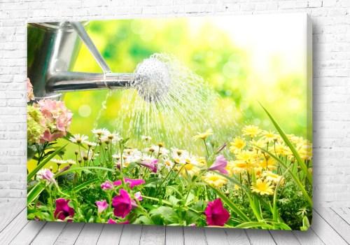 Постер Летний душ