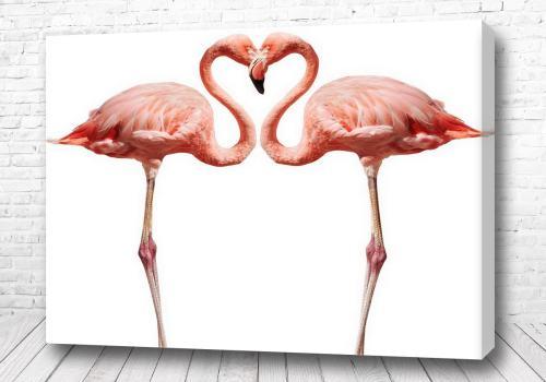 Постер Два розовых фламинго