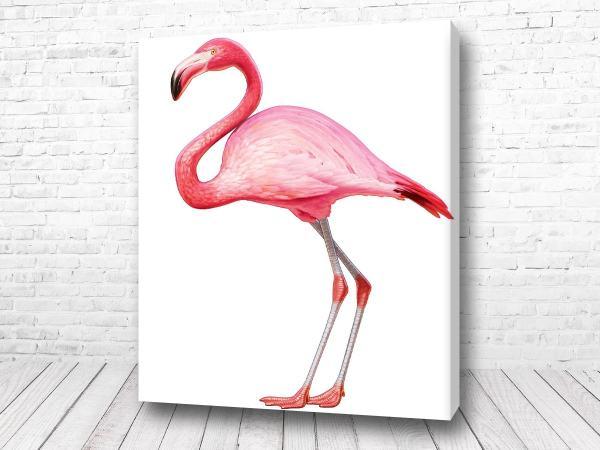 Постер Грациозный розовый фламинго