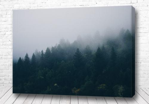 Постер Густой туман