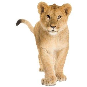 Muursticker zoo family leeuw