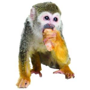 Muursticker zoo family aapje met banaan