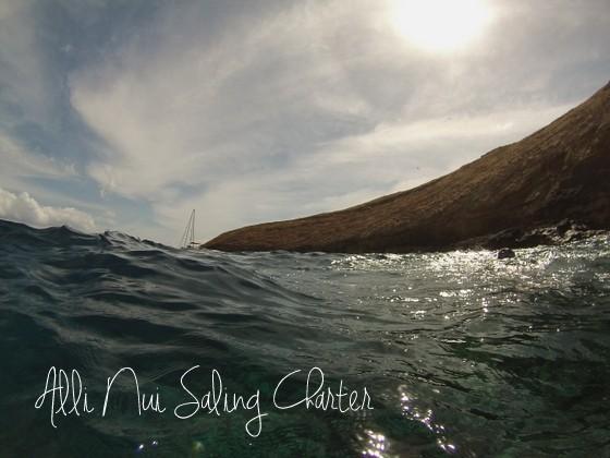 alli nui activities to do in maui hawaii