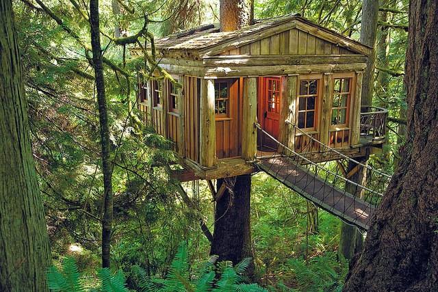 Habitats alternatifs, cabanes et huttes - Page 5 Treehouse-hotel