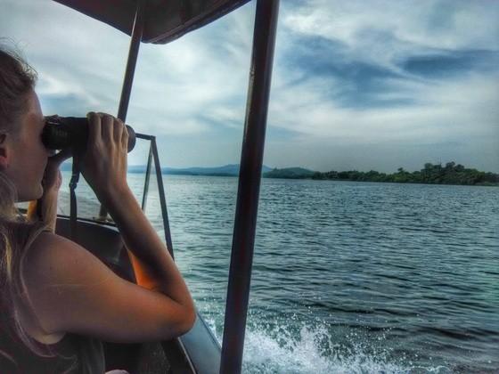 River Tern Jungle Lodge Boat Safari