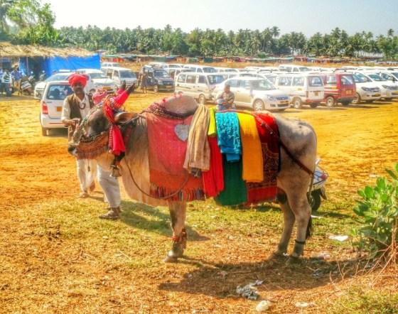 anjuna wednesday flea market
