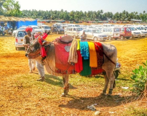 anjuna wednesday flea market