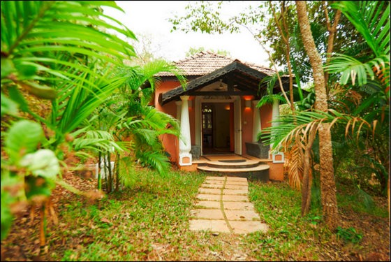 wildflower villas goa eco resort