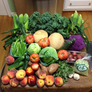 Fruits and Veggies – Version 3
