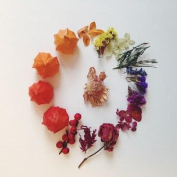 Botanical advent