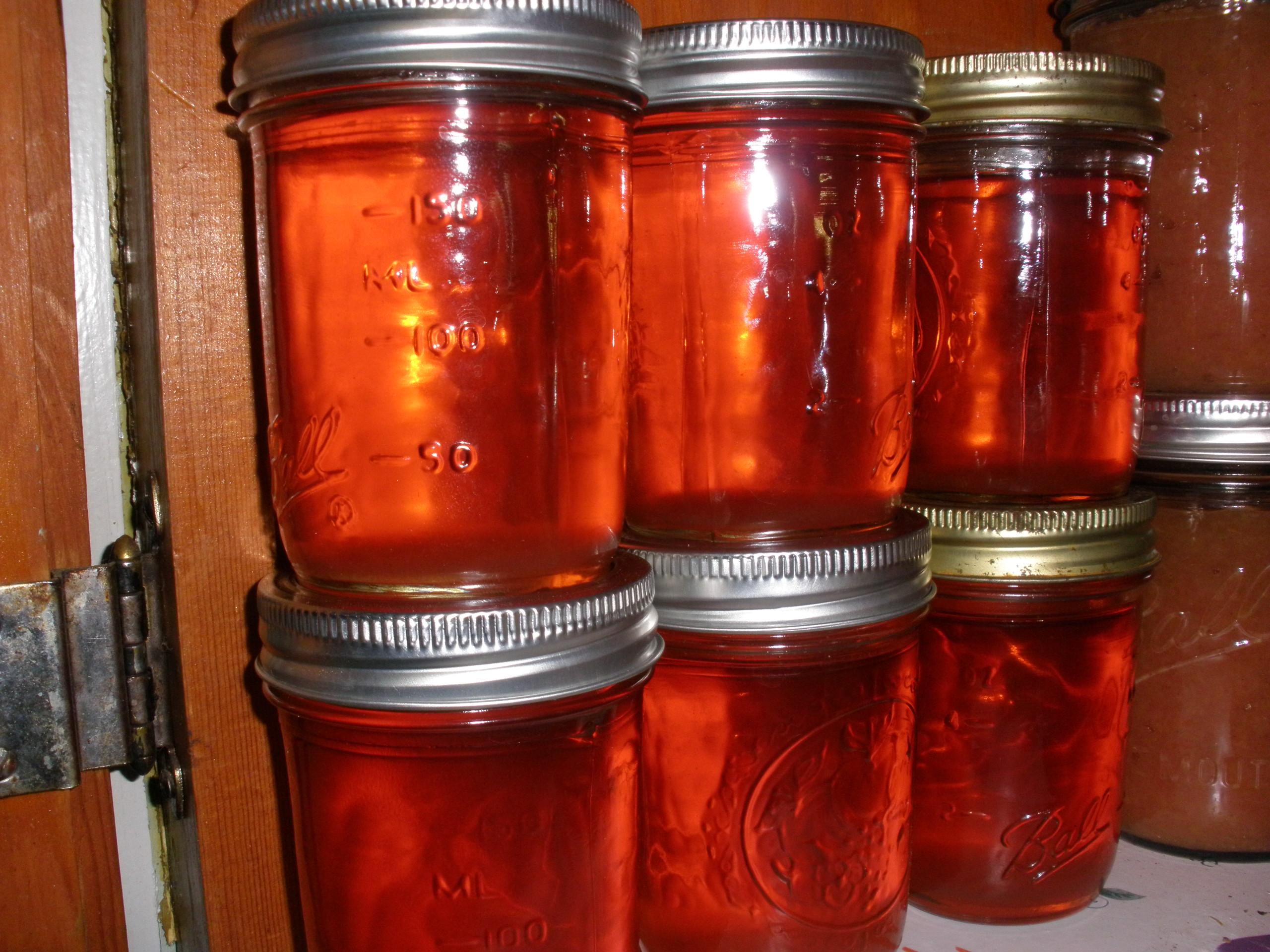 Ida Red apple jelly