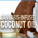 Learn how to make cannabis coconut oil in this how-to guide.