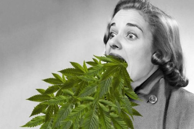 What Is Cannabinoid Hyperemesis Syndrome: What You Need To Know