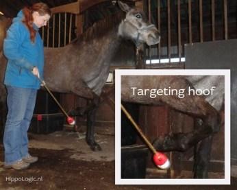 _targeting_hoof2