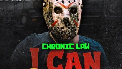 Chronic Law I Can Swear