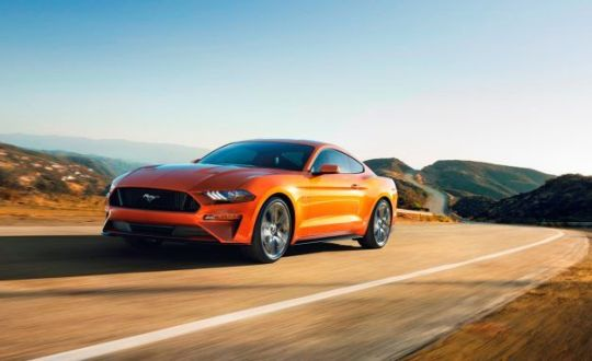 2019 Ford Mustang Bullitt Driven  Riding 480 Loud Horses   Review     2019 Ford Mustang Bullitt Driven  Riding 480 Loud Horses   Review   Car and  Driver