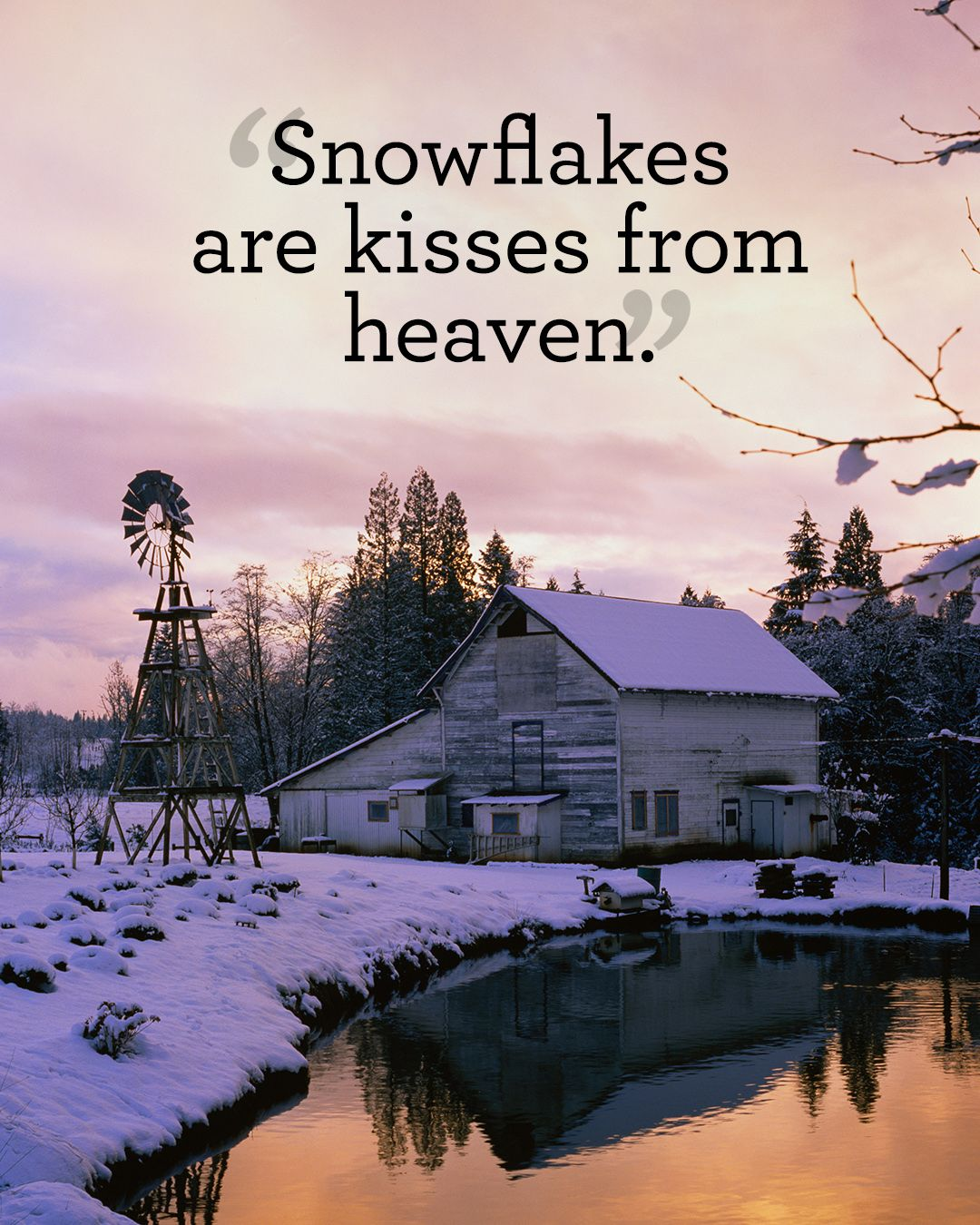 Winter Reflection Quote