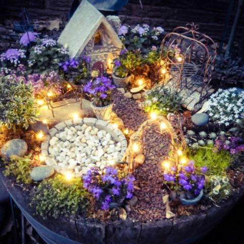 Fairy Garden Ideas: Twinkling Garden
