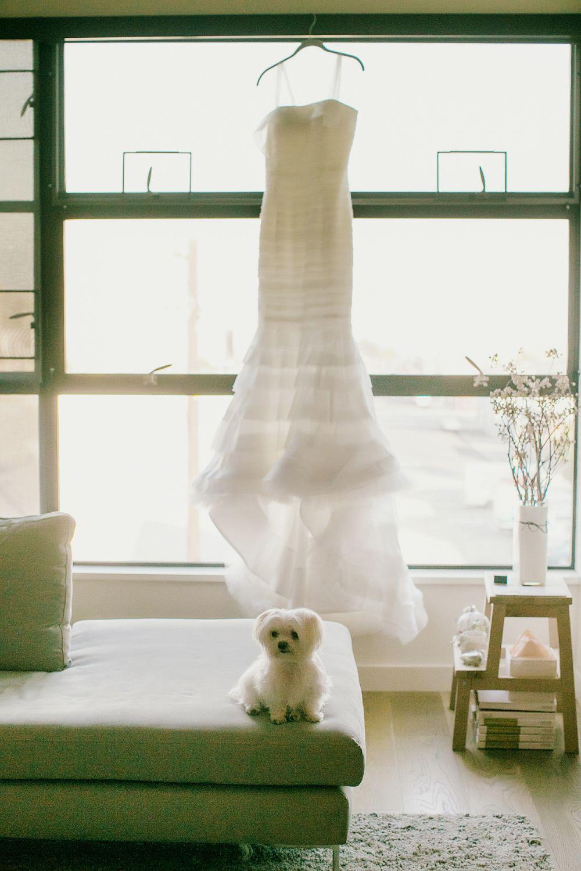 dog wedding ideas getting ready