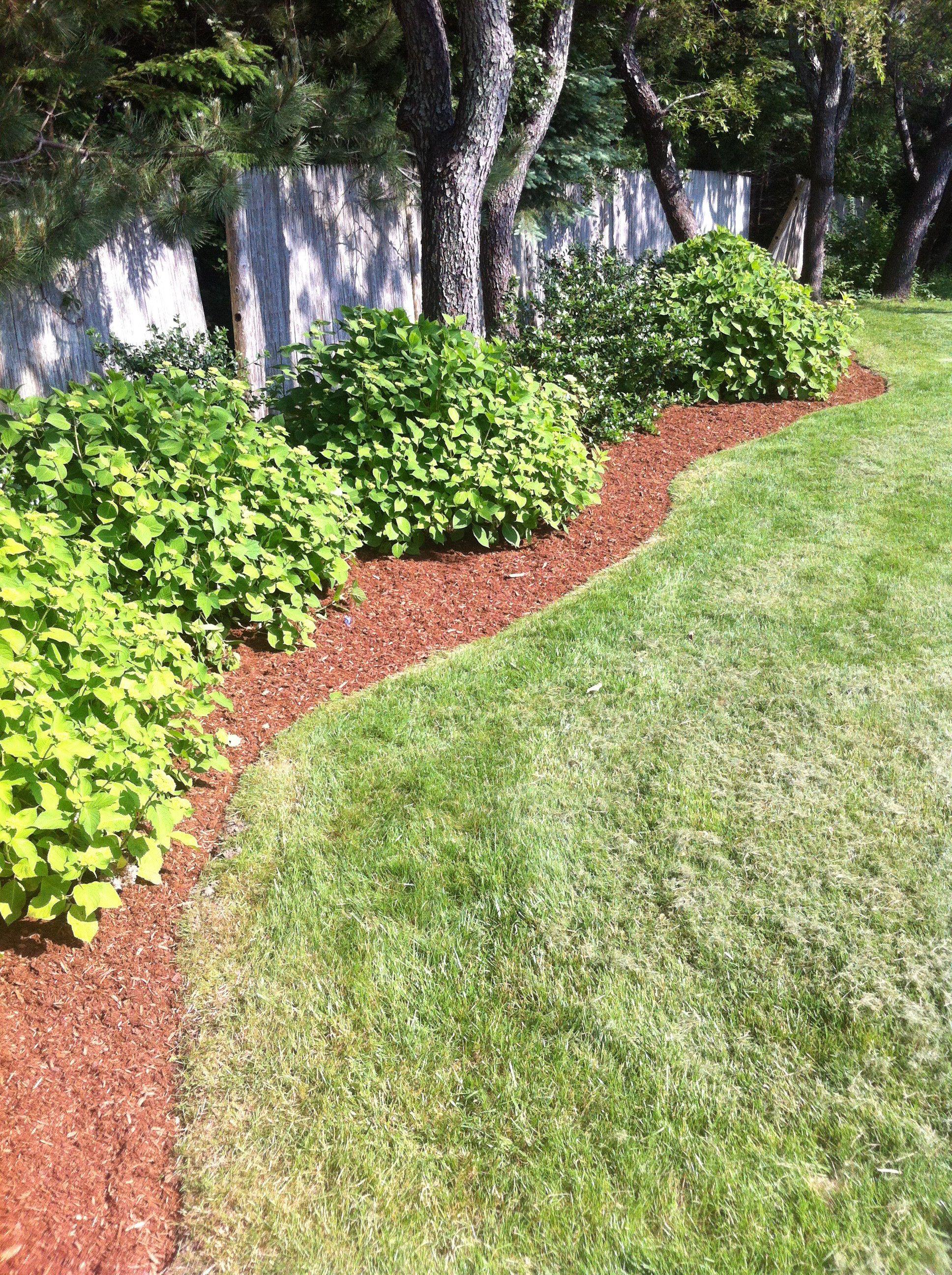 Easy Landscaping Ideas Low Maintenance Landscape Design Tips