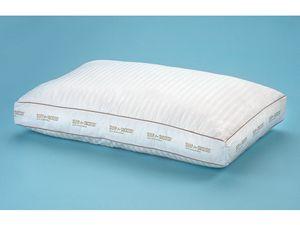 sleep for success pillow online