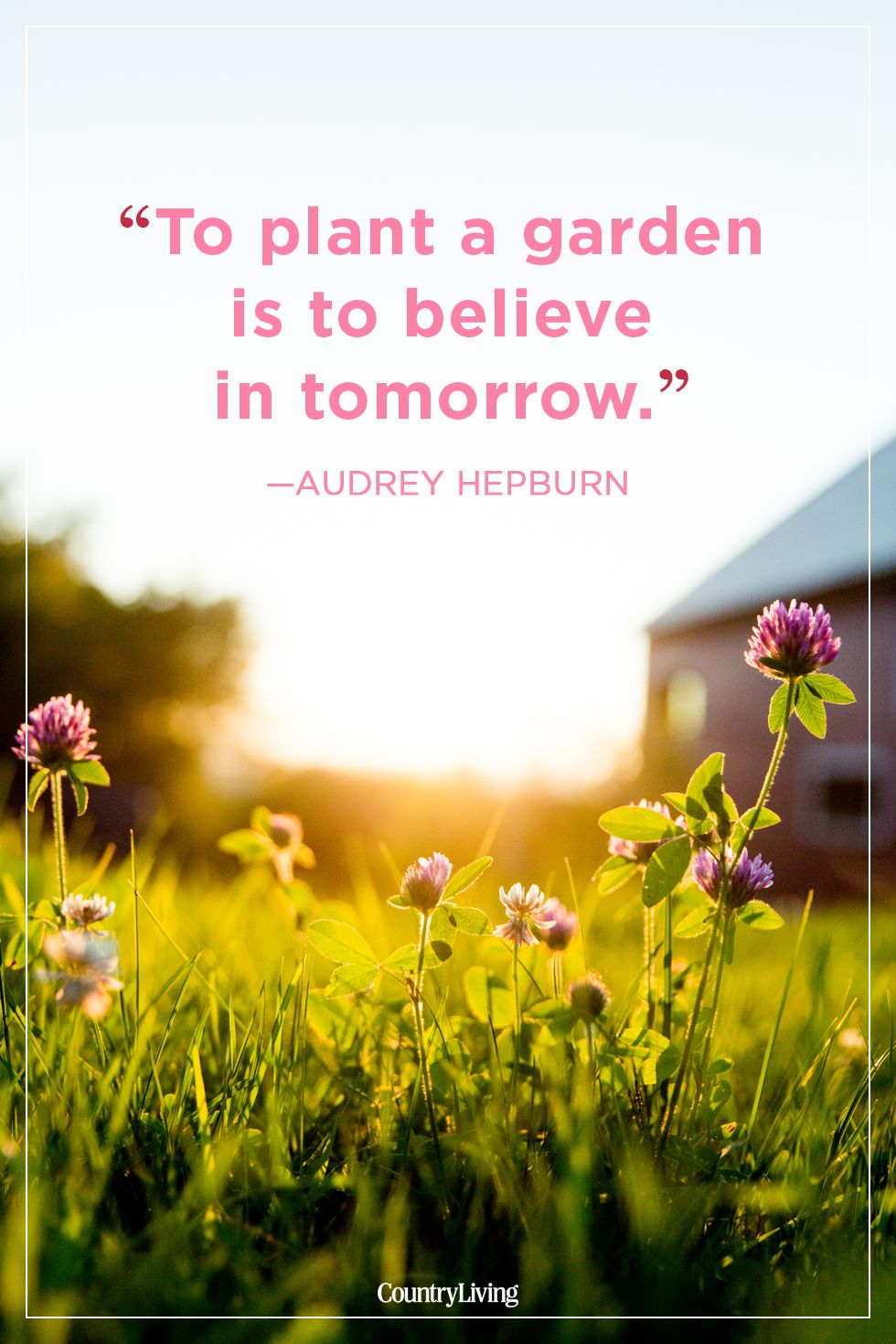 24 Best Summer Quotes And Sayings Inspirational Quotes