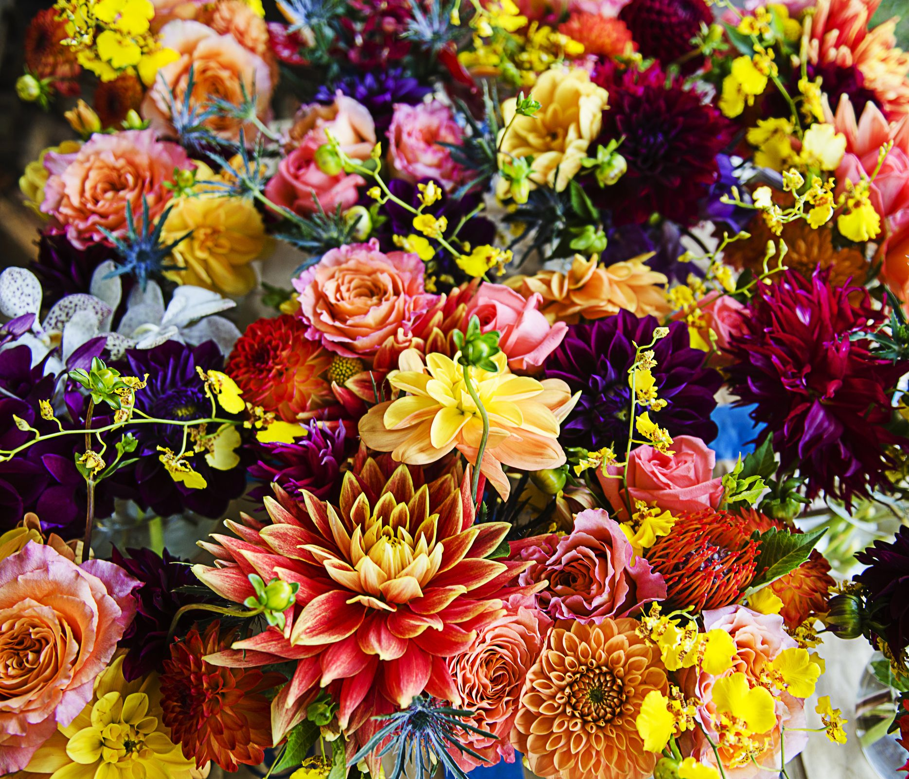 What Your Birth Flower Says About You The Birth Flower For