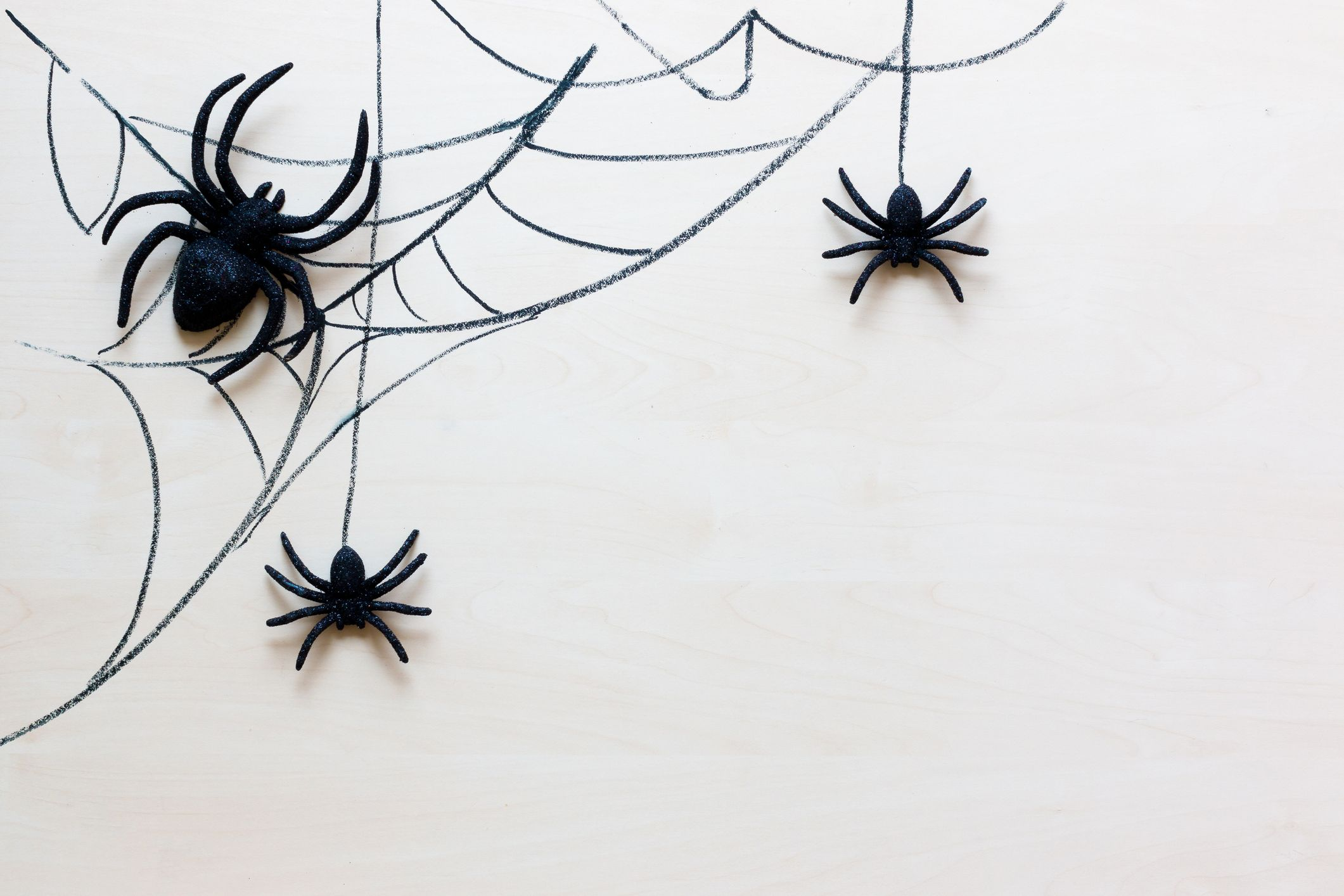 How To Get Rid Of Spiders 13 Natural Ways From Pest Experts
