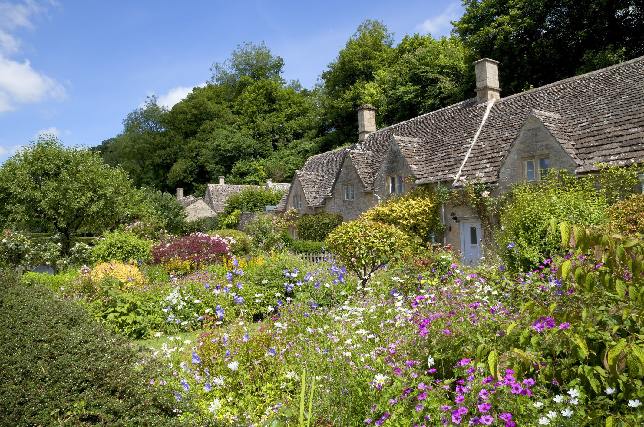 20 Things to Do in the Garden During Self-Isolation