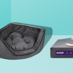 10 Best Dog Beds In 2020 Top Rated Beds For Small And Large Dogs