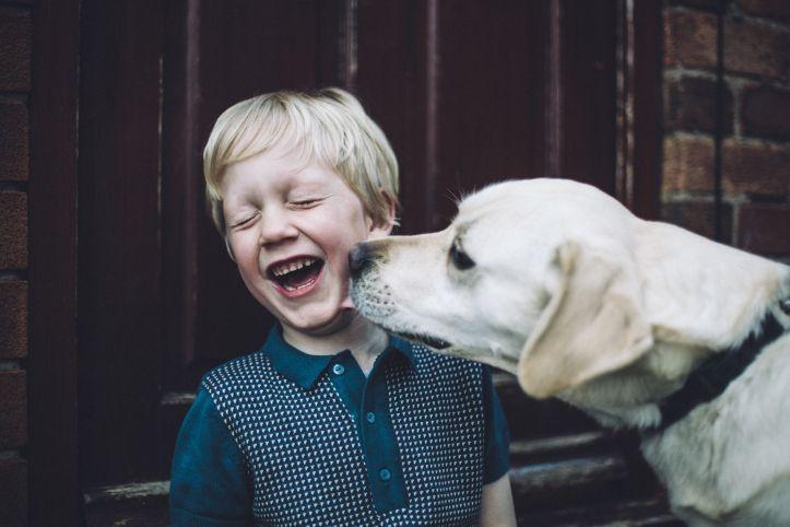 dog child