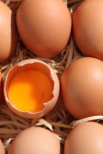 Egg Nutrition Facts - Health Benefits of Eggs