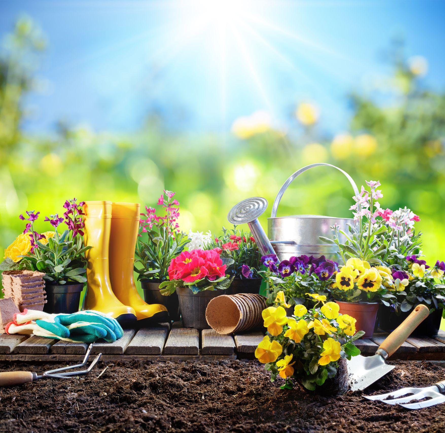 7 Health Benefits Of Gardening Get Healthy While Gardening