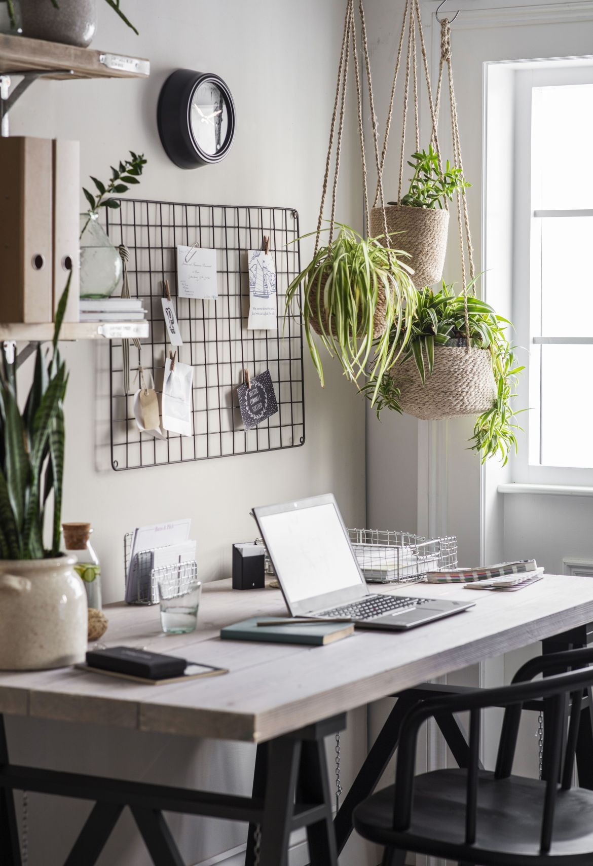 study space with plants