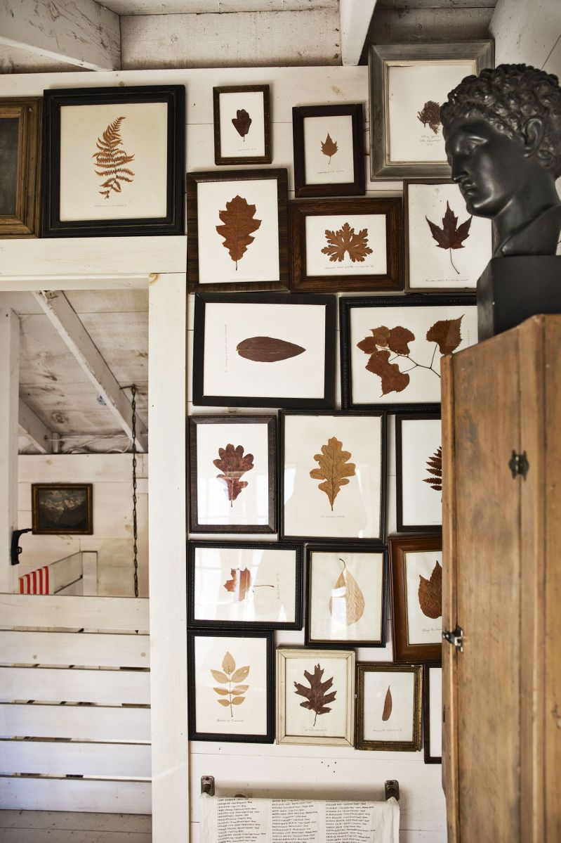 framed leaves in a maine cottage