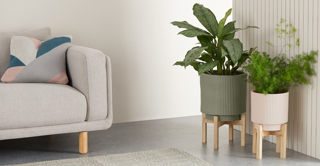 Best Plant Pots 20 Indoor And Outdoor Planters And Pots