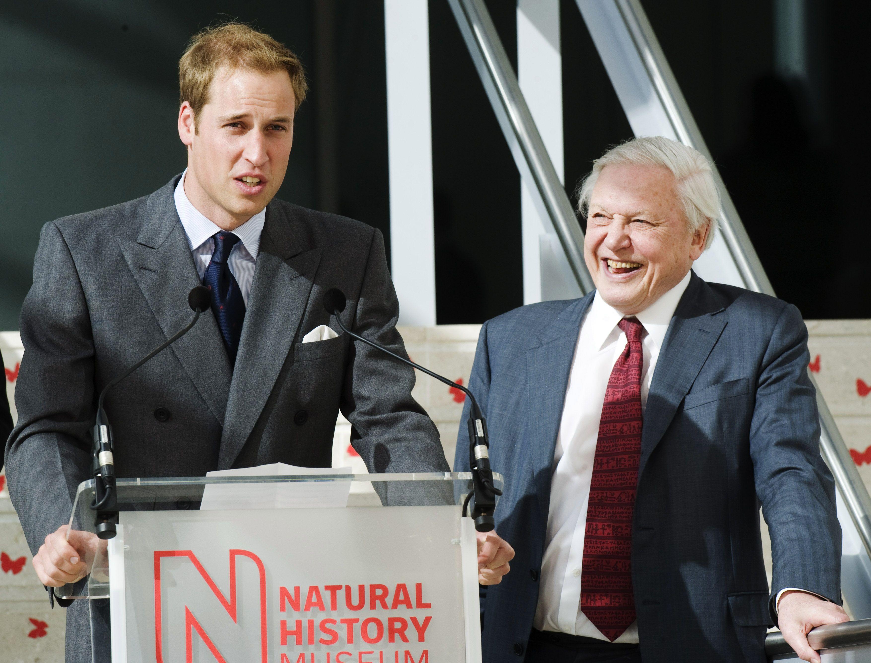 Prince William To Interview David Attenborough At Davos