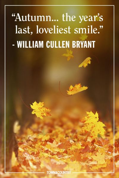 12 Inspiring Fall Quotes   Best Quotes and Sayings About Autumn image