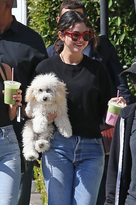 Selena Gomez Has a Matcha Date with Her Dog in Los Angeles