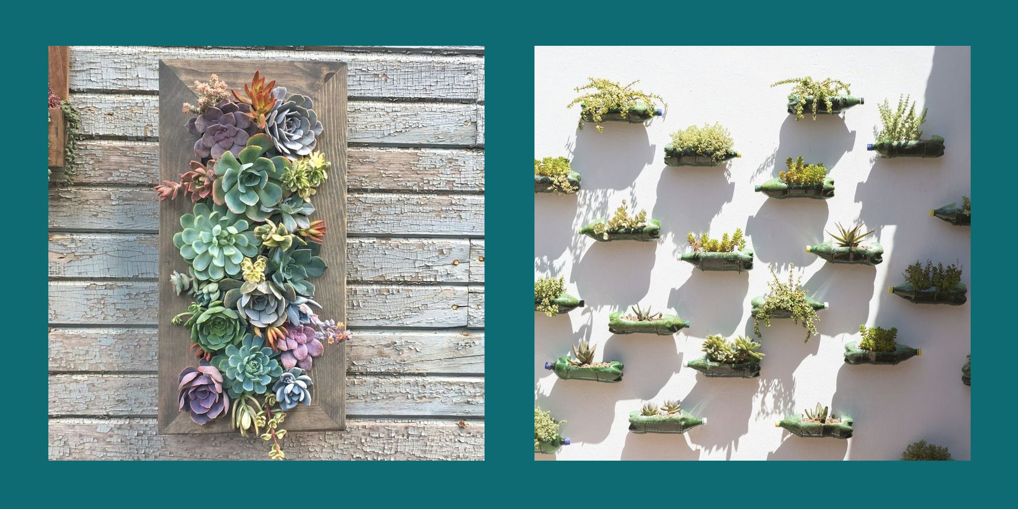 10 Brilliant Vertical Garden Ideas - Interesting Vertical Garden