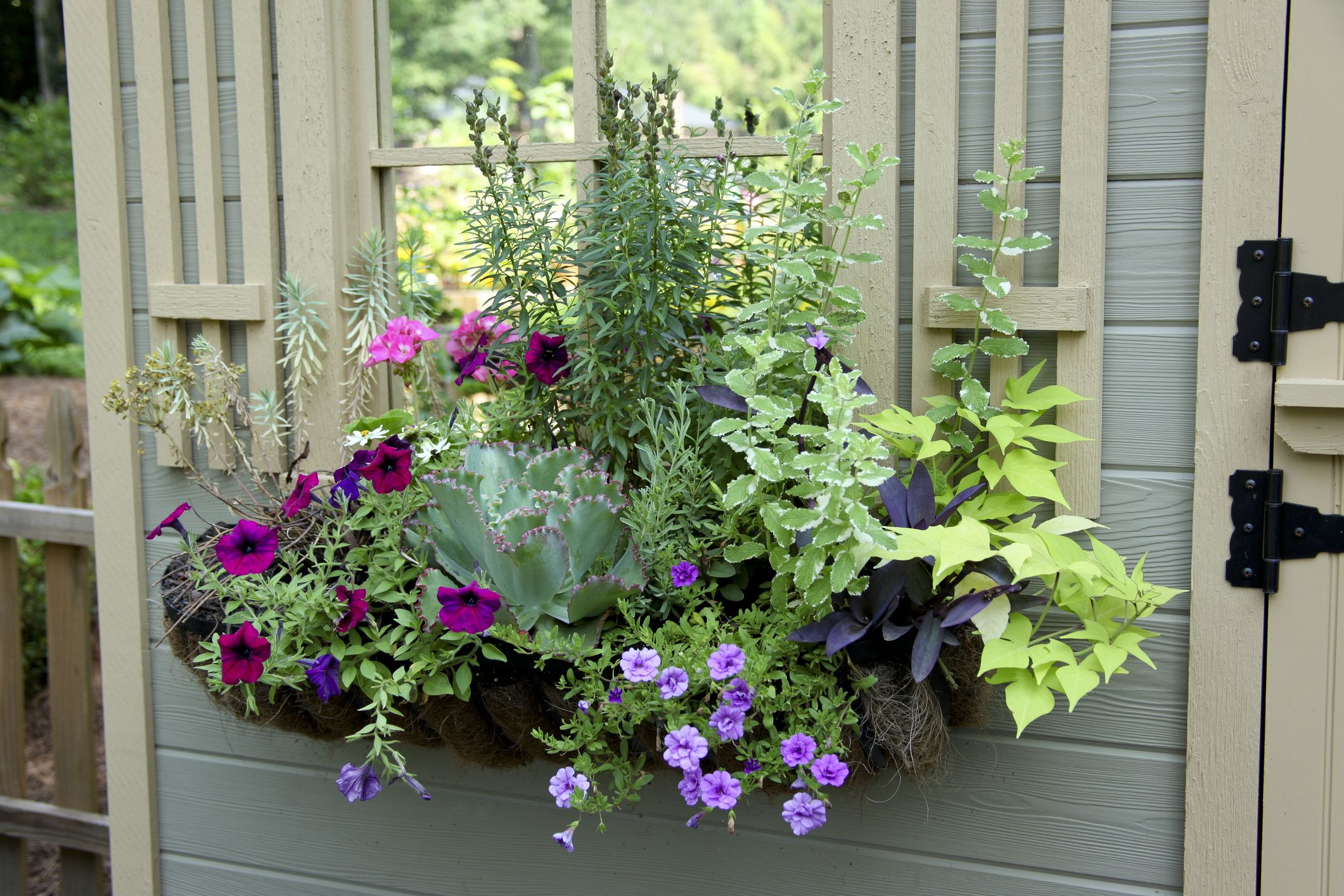 20 Planter Box Ideas To Inspire You
