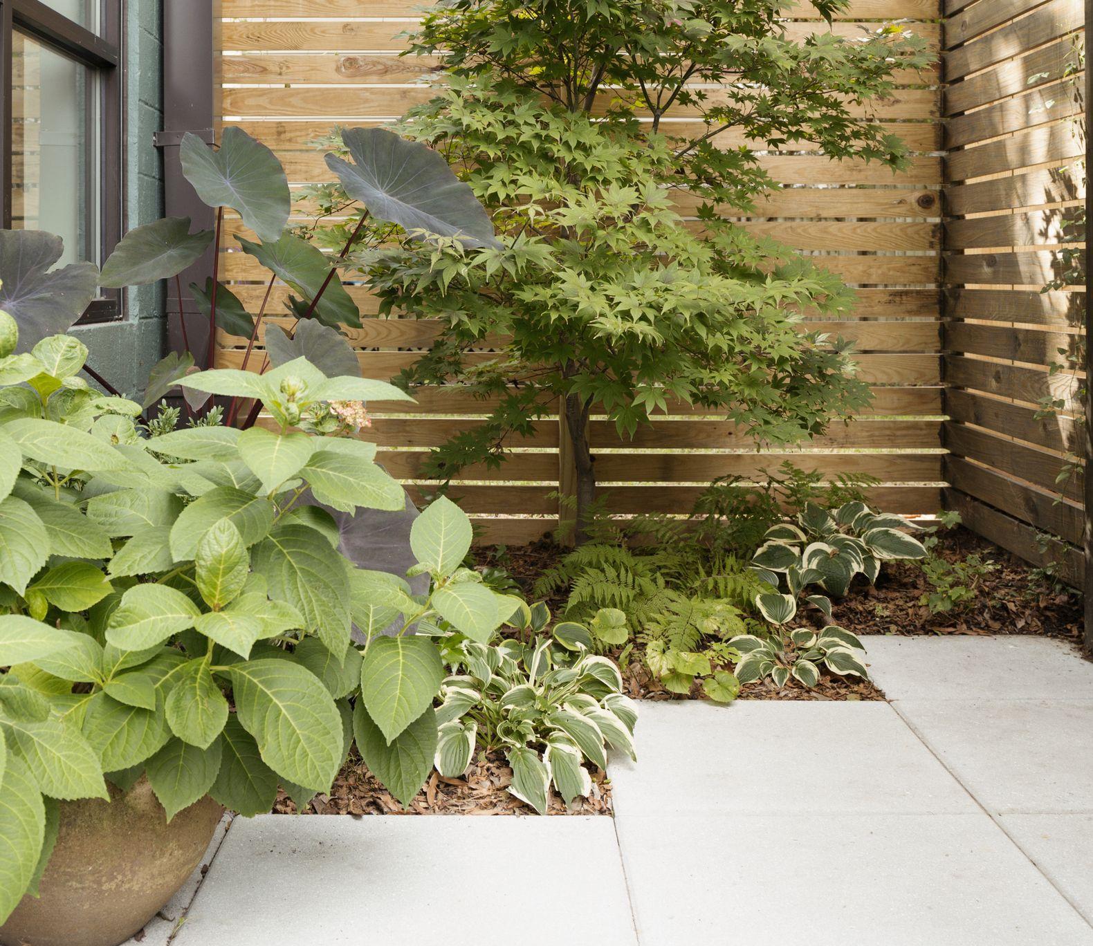 Low Maintenance Garden Ideas Garden Design Ideas Low