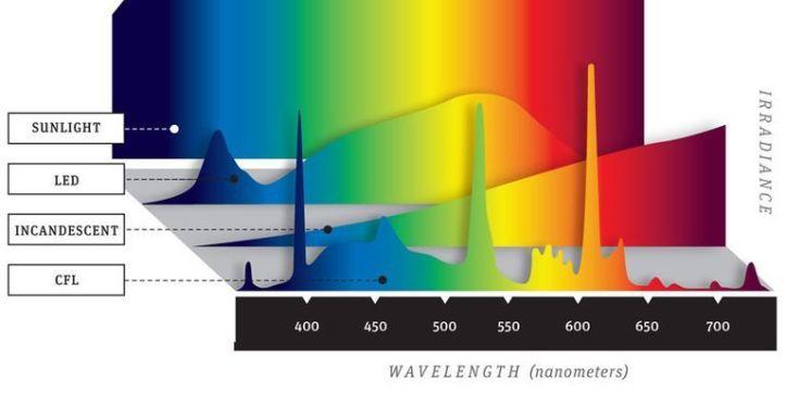 Image result for led light spectrum